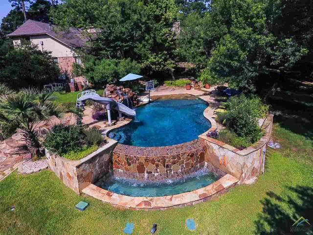 506 Wilder Way, Tyler, TX 75703 (MLS #10124588) :: Griffin Real Estate Group