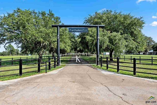 10882 E Us Highway 79, Oakwood, TX 75855 (MLS #10124709) :: Griffin Real Estate Group