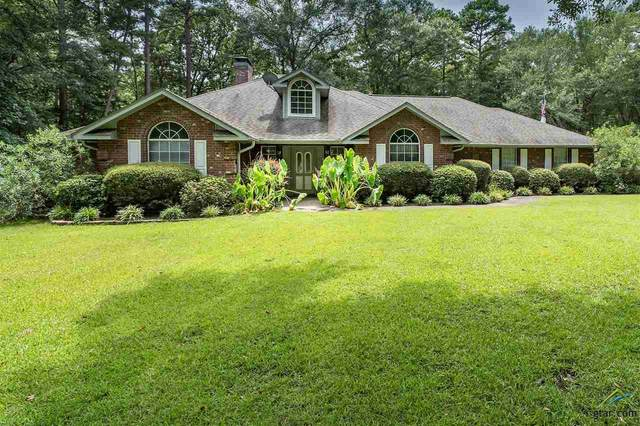 205 County Road 2455, Mineola, TX 75773 (MLS #10124778) :: Griffin Real Estate Group