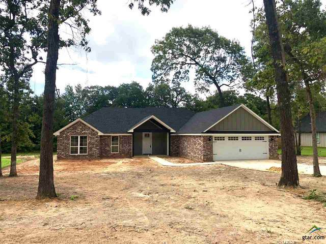 14066 Twin Ranch Rd (Lindale ISD), Tyler, TX 75704 (MLS #10124892) :: The Wampler Wolf Team