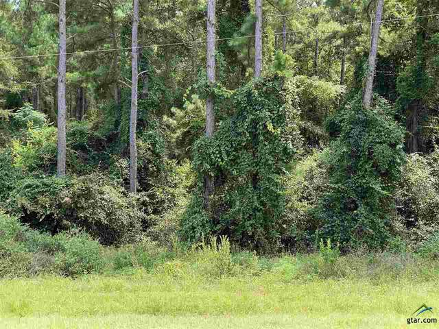 LOT 7 Fm 2869, Hawkins, TX 75765 (MLS #10124928) :: Griffin Real Estate Group