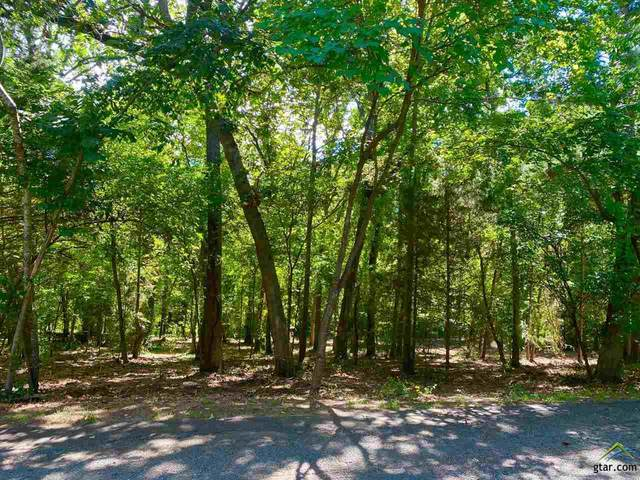 LOT 48 Lazy Lane, Flint, TX 75762 (MLS #10124951) :: Griffin Real Estate Group
