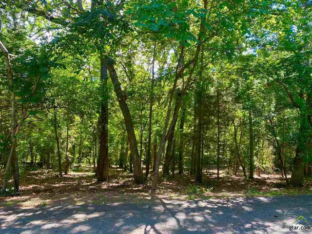 LOT 49 Lazy Lane, Flint, TX 75762 (MLS #10124952) :: Griffin Real Estate Group