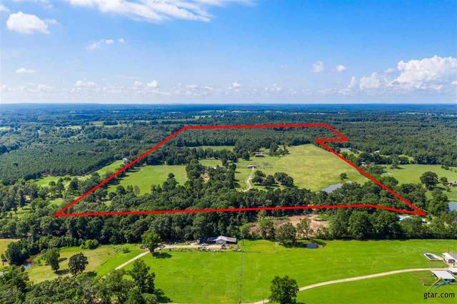 700 County Road 1312, Pittsburg, TX 75686 (MLS #10124956) :: The Wampler Wolf Team