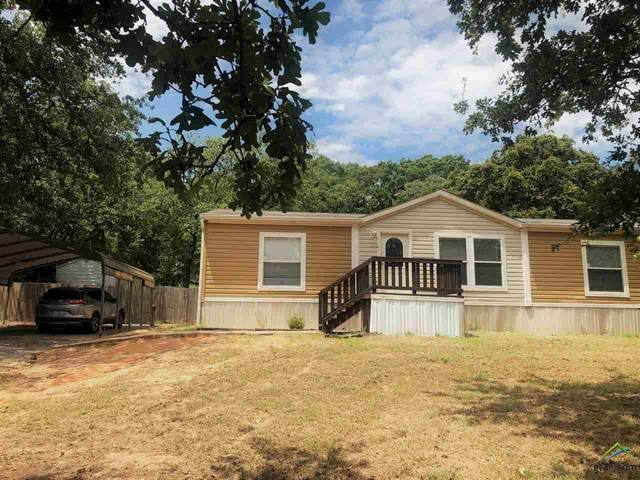 17185 Countrywood, Lindale, TX 75771 (MLS #10125031) :: The Wampler Wolf Team