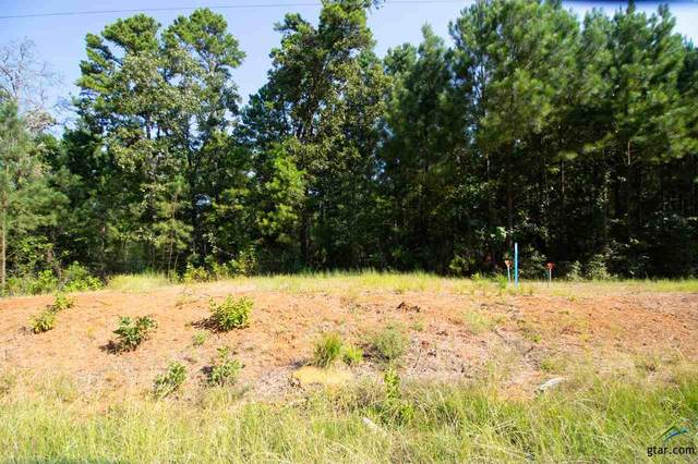 Lot 6 C R 436 (Hubbard Hills), Lindale, TX 75771 (MLS #10125162) :: RE/MAX Professionals - The Burks Team