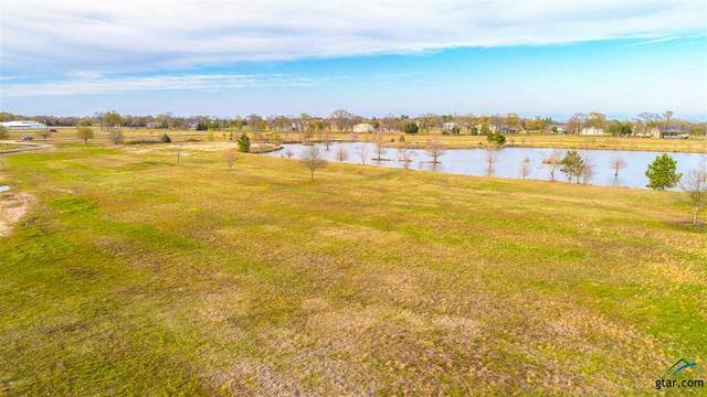 Lot 16 Pr 7001, Wills Point, TX 75169 (MLS #10125292) :: Griffin Real Estate Group