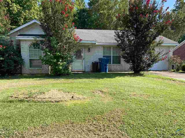 601 Therese Ct, Mt Pleasant, TX 75455 (MLS #10125576) :: The Wampler Wolf Team