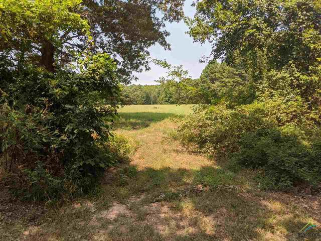 4.434 acres TBD Cr 3606, Brownsboro, TX 75756 (MLS #10125621) :: The Wampler Wolf Team