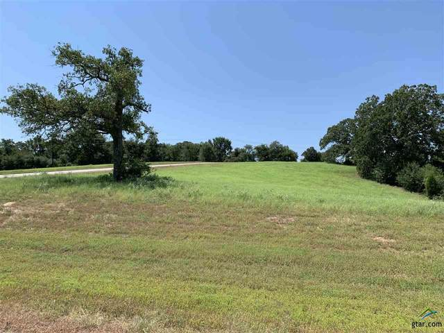 Lt 257 High Point Ct, Athens, TX 75752 (MLS #10125687) :: The Edwards Team Realtors