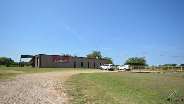 1671 SW Interstate 30 Service Road, Mt Vernon, TX 75457 (MLS #10125699) :: The Wampler Wolf Team