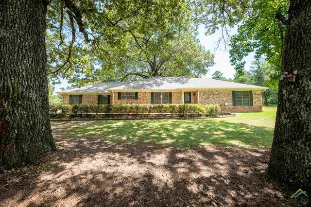10666 Us Highway 59, Nacogdoches, TX 75965 (MLS #10125795) :: Griffin Real Estate Group