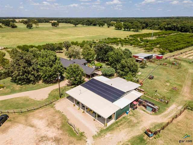 10800 Cr 4090, Scurry, TX 75158 (MLS #10125816) :: The Edwards Team Realtors