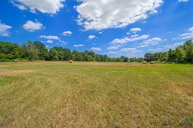 TBD Cr 152, Bullard, TX 75757 (MLS #10125832) :: Griffin Real Estate Group