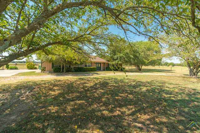 667 County Road 4711, Sulphur Springs, TX 75482 (MLS #10125859) :: Griffin Real Estate Group