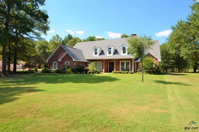 24370 Stallion Park Pl, Lindale, TX 75771 (MLS #10125865) :: Griffin Real Estate Group