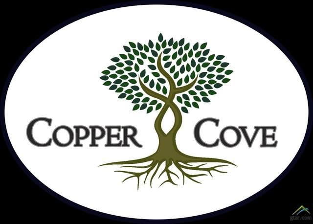 5605 Copper Park, Tyler, TX 75703 (MLS #10125919) :: RE/MAX Professionals - The Burks Team