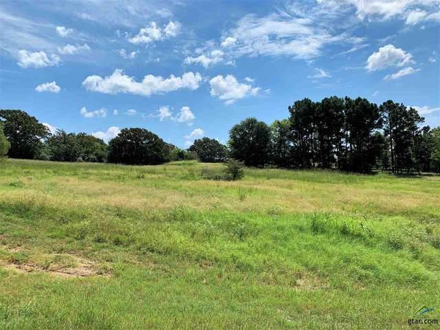 5433 Lago Vista Drive, Athens, TX 75752 (MLS #10125980) :: Griffin Real Estate Group