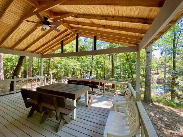 165 Pr 8576, Winnsboro, TX 75494 (MLS #10126195) :: Griffin Real Estate Group