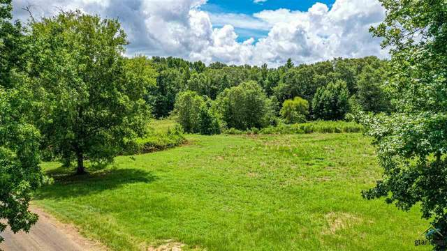 23710 Champion Dr, Lindale, TX 75771 (MLS #10126250) :: Griffin Real Estate Group