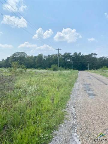 TBD County Road 2320, Pittsburg, TX 75686 (MLS #10126281) :: Griffin Real Estate Group