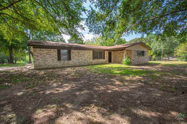 15684 Mcelroy, Whitehouse, TX 75791 (MLS #10126358) :: The Wampler Wolf Team