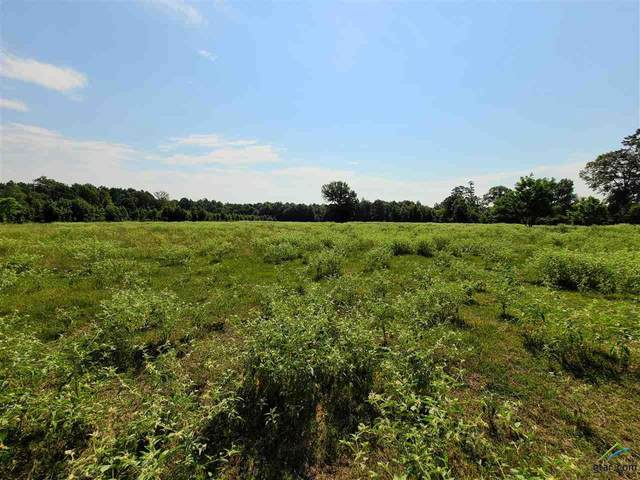 11728 Fm 2088, Pittsburg, TX 75686 (MLS #10126375) :: Griffin Real Estate Group