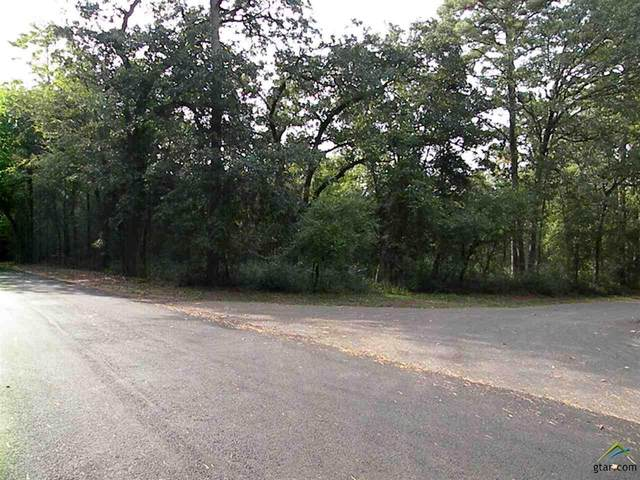 LOT 72, 73 Pine Gln, Holly Lake Ranch, TX 75765 (MLS #10126462) :: The Wampler Wolf Team