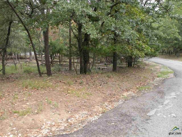 LOT 83 Primrose, Holly Lake Ranch, TX 75765 (MLS #10126464) :: The Wampler Wolf Team