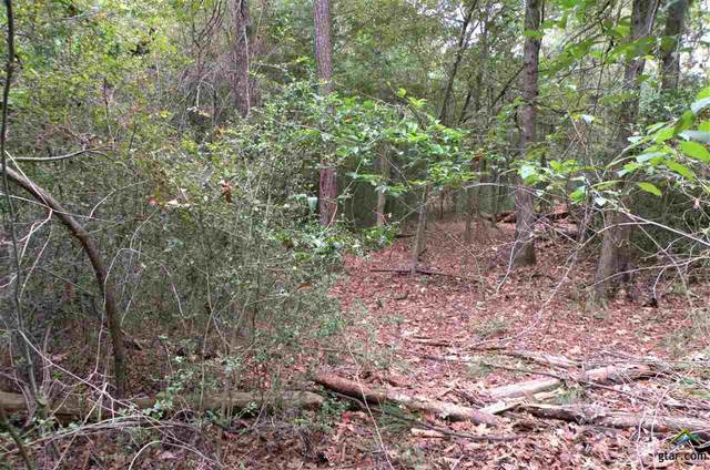 LOT 450 Raton Pass, Holly Lake Ranch, TX 75765 (MLS #10126470) :: The Wampler Wolf Team