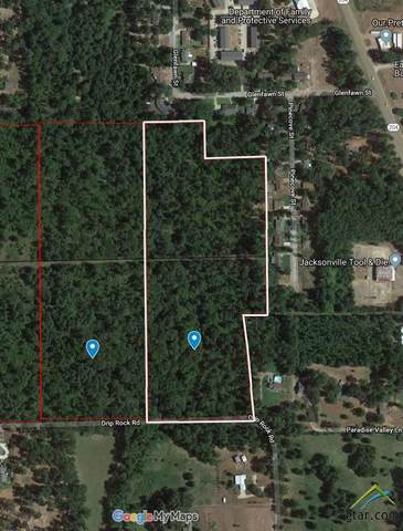 Lot 6 Ph 2 Drip Rock Rd., Jacksonville, TX 75766 (MLS #10126516) :: Griffin Real Estate Group