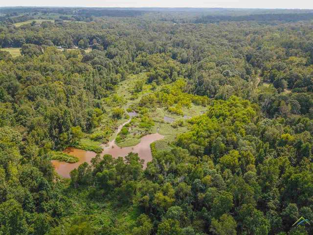 4770 Cr 3800, Athens, TX 75752 (MLS #10126547) :: The Wampler Wolf Team