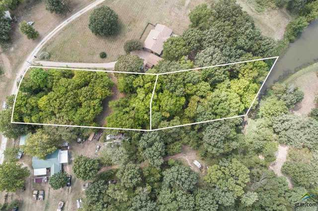 0000 Private Road 5225, Quitman, TX 75783 (MLS #10126580) :: The Wampler Wolf Team