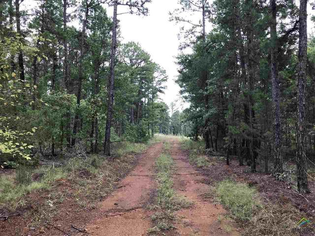 TBA County Road 2697, Hawkins, TX 75765 (MLS #10126660) :: Griffin Real Estate Group