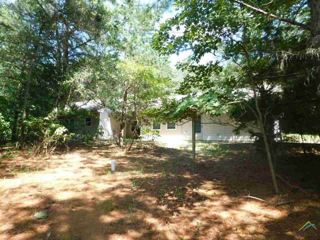 797 Cr 3235, Quitman, TX 75783 (MLS #10126702) :: Griffin Real Estate Group