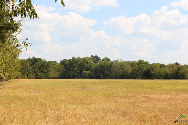 402 Rs County Road 1520, Lone Oak, TX 75453 (MLS #10126721) :: Griffin Real Estate Group