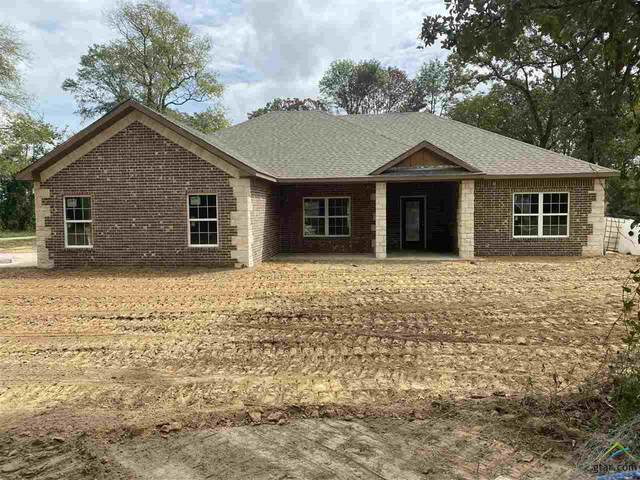 486 County Road 4231, Mt Pleasant, TX 75455 (MLS #10126777) :: The Wampler Wolf Team