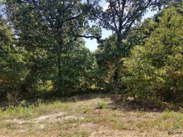 TBD Cumberland Circle Unit 14-16, Murchison, TX 75778 (MLS #10126810) :: The Wampler Wolf Team