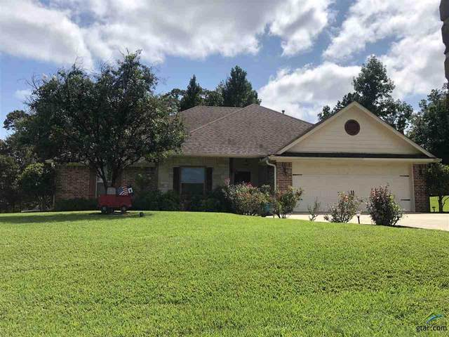 13523 Country Glen Dr, Lindale, TX 75706 (MLS #10126814) :: The Wampler Wolf Team