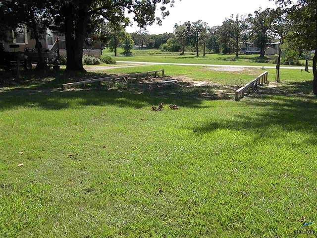 LOT 126 Geronimo, Quitman, TX 75783 (MLS #10126857) :: Griffin Real Estate Group