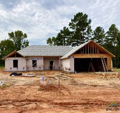 18328 Timber Oaks Dr, Lindale, TX 75771 (MLS #10126911) :: The Wampler Wolf Team