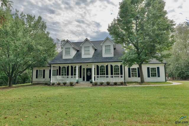 10229 County Road 290, Tyler, TX 75707 (MLS #10126932) :: The Wampler Wolf Team