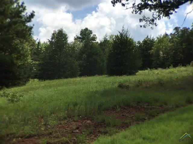 347 Hines Crossing, Bullard, TX 75757 (MLS #10126994) :: Wood Real Estate Group
