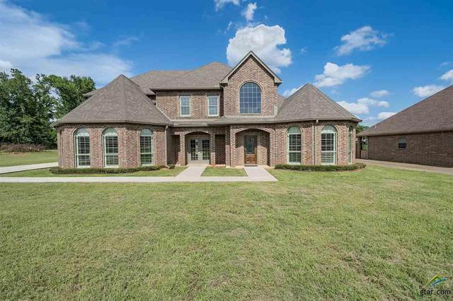 501 Maji Road, Whitehouse, TX 75791 (MLS #10127029) :: Griffin Real Estate Group