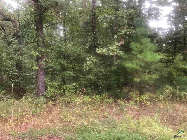 17837 Deer Trail, Flint, TX 75762 (MLS #10127136) :: Griffin Real Estate Group