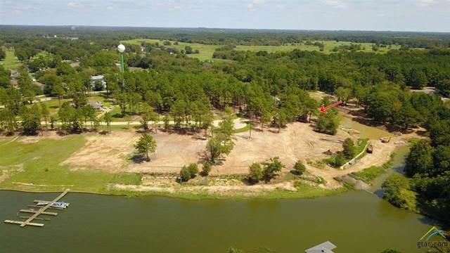 22251 Mallards Cove Court, Bullard, TX 75757 (MLS #10127155) :: RE/MAX Professionals - The Burks Team