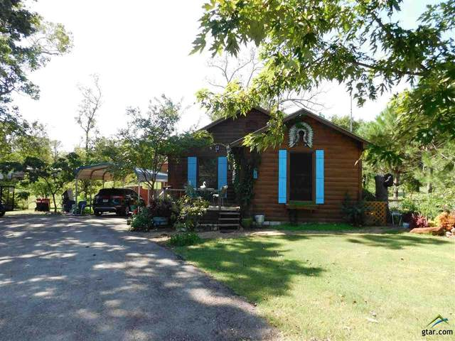 877 Indian Gap, Quitman, TX 75783 (MLS #10127257) :: Griffin Real Estate Group