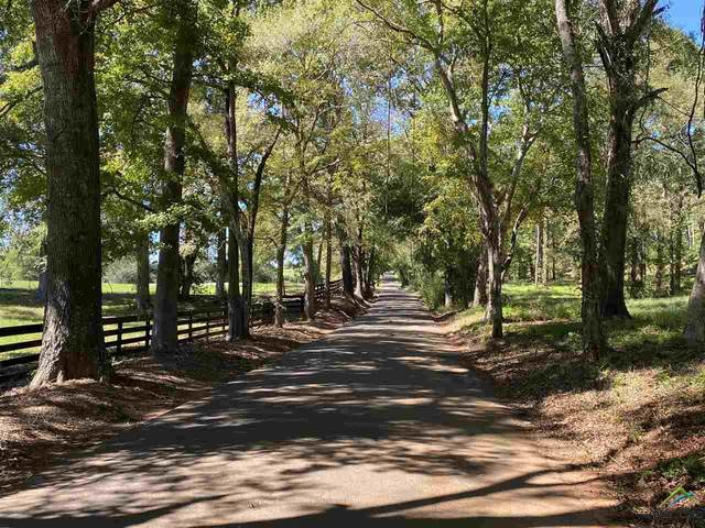 Tract 1 Drip Rock Rd, Jacksonville, TX 75766 (MLS #10127357) :: Griffin Real Estate Group