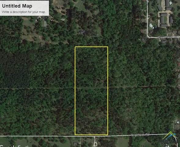 2400 Block Drip Rock, Jacksonville, TX 75766 (MLS #10127543) :: Griffin Real Estate Group