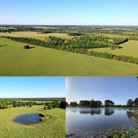 9974 E Farm To Market 909, Bogata, TX 75417 (MLS #10127745) :: Griffin Real Estate Group